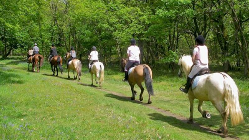 casali-equitazione